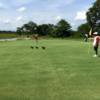 A view of a green at Nkana Golf Club