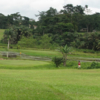 A view of a green at Damang Golf Club (Andre Beyers)