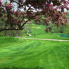 View of a green and fairway at Eagle Ridge Resort & Spa