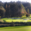A view of the 5th green protected by bunkers at Bodensee Weissensberg Golf Club
