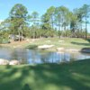 A sunny day view from Rayburn Country Resort