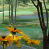 A view of a green at Blowing Rock Country Club