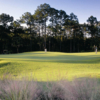 A view of a green from Country Club At Mirasol
