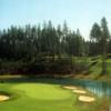 View of a bunkered green at Gold Mountain Golf Course