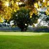 A view of a green at Rustic Ridge Golf Club