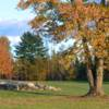 A view of a green surrounded by fall foliage trees at Hidden Meadows Golf Course
