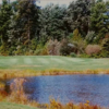 A view of a green at Westwind Golf Course