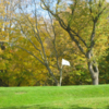 A view of hole #8 at Doty's Golf Course