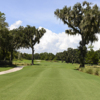 A view from tee #8 at Dye's Valley Course from TPC Sawgrass