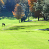 A view from a tee at Beech Mountain Club