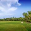 A view from a tee at Bahia Beach Resort & Golf Club