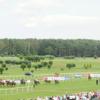 A view from Market Rasen Racecourse Golf Course