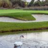 A view of a hole at Malahide Golf Club