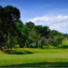 A sunny day view from Forest Hills Golf & Country Club