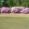 A view of a green from Carolina Golf Club at Botany Woods