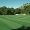 A view of the 14th green at Woods Valley Golf Club