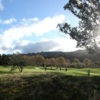 A sunny day view from Boulcott's Farm Heritage