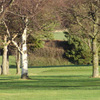 Gifford Golf Club