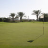 A view of a green at Safaa Golf Club and Academy (KAUST)