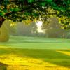 A view of a green at Fraserglen Golf Course & Training Centre