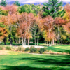 Fall view of a green at Pine Oaks Golf Club