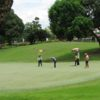A view of a green at The Orchard Golf & Country Club