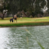 A view over the water from Ed Rachal Memorial Golf Course