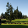 A view from a tee at Bellingham Golf & Country Club