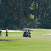 A sunny day view of a green at Jekyll Island Golf Club