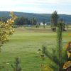 A view of a green at Pine Valley Golf Centre