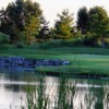 A view of a green with water coming into play at Huron Oaks Golf Course