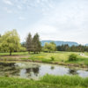 View from the 2nd tee at Pitt Meadows Golf and Country Club
