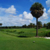 View from the 8th tee at Ridgewood Lakes Golf Club