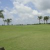 A view of green at Freeport Municipal Golf Course