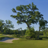 A view of the 16th green at Wilderness Golf Course