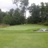 A view of a hole at Forest Point Resort & Golf Course.