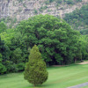 A view of a green at Cliff View Golf Club and Inn.