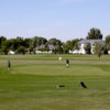 A view of a green at Jack Hoeven Wee Links Golf Course.