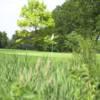 A view of a green at Joe Louis Golf Club
