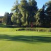 A sunny day view of a green at Beverly Golf and Country Club.