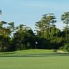A view of a green at Boca Woods Country Club.