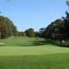 Looking back from a green at Balgowlah Golf Club