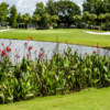 View of the 2nd hole at Crane Lakes Golf & Country Club
