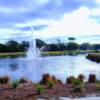 A view from Heron Creek Golf and Country Club.