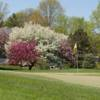 A view of a green surrounded by blossom spring trees at Lincolnshire Fields Country Club.