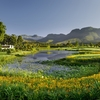 A view of the 4th hole at Outeniqua Course from Fancourt Hotel and Country Club Estate