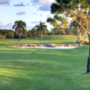A view of the 9th hole at Eagle at Okeeheelee Golf Course.
