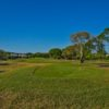 A view of a tee at Palm Beach Polo & Country Club.