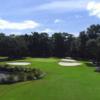 View of a green at Port Royal Golf Club