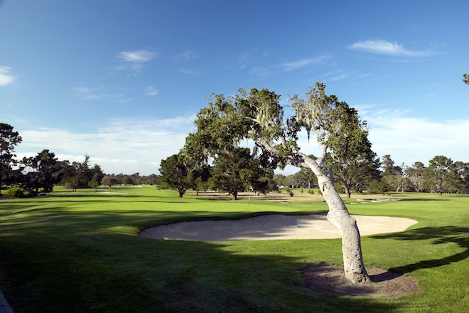 Del Monte Golf Course is an inland, old-school diversion from brawnier Pebble Beach and Spyglass Hill. (Miller Brown)